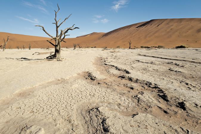 Grégoire De Poorter - grevision - Namibia - Deathvlei